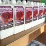 Harga Paket Usaha Laundry Subang